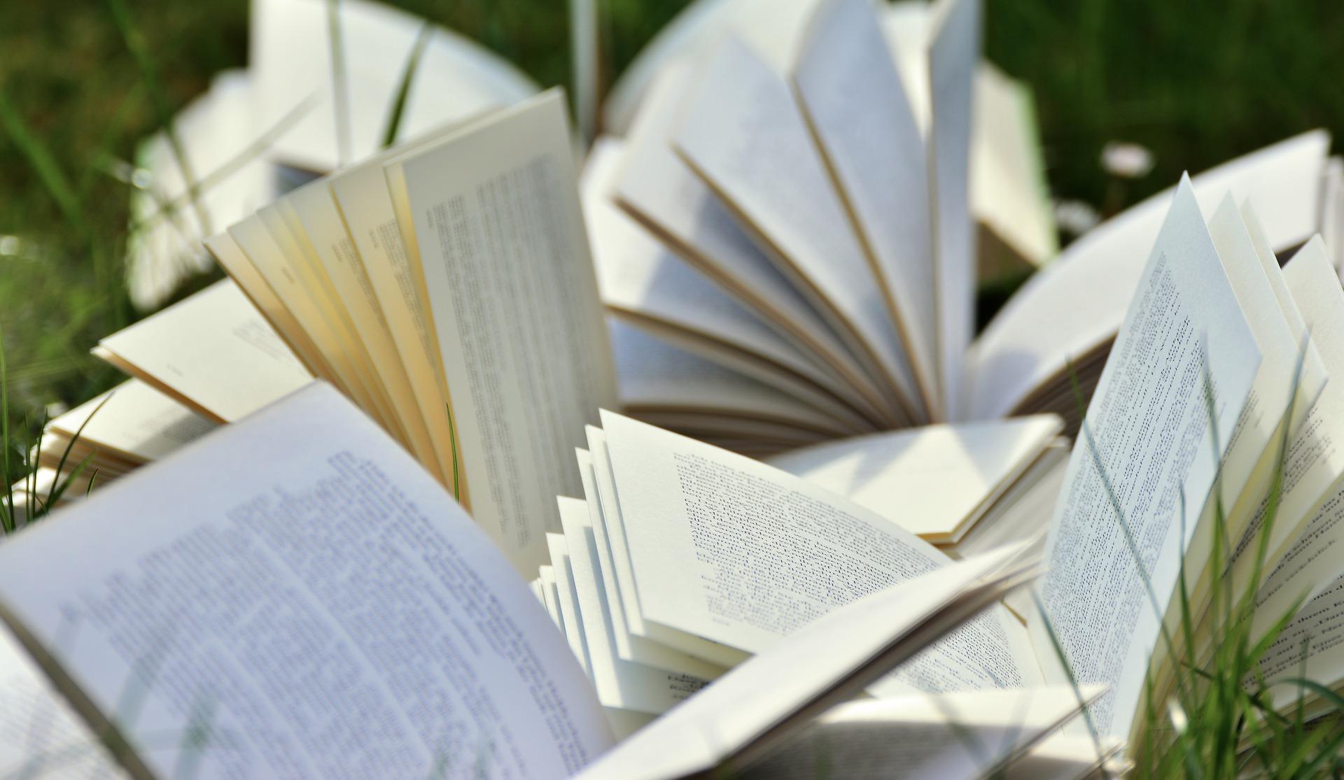 Homeschooling Curriculum - Books