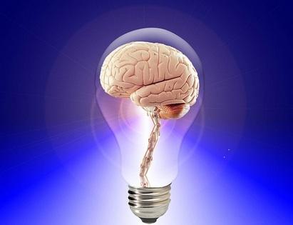 Brain in bulb